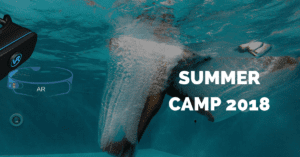 summercamp 2 300x157 - summercamp